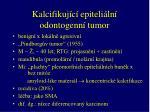 kalcifikuj c epiteli ln odontogenn tumor