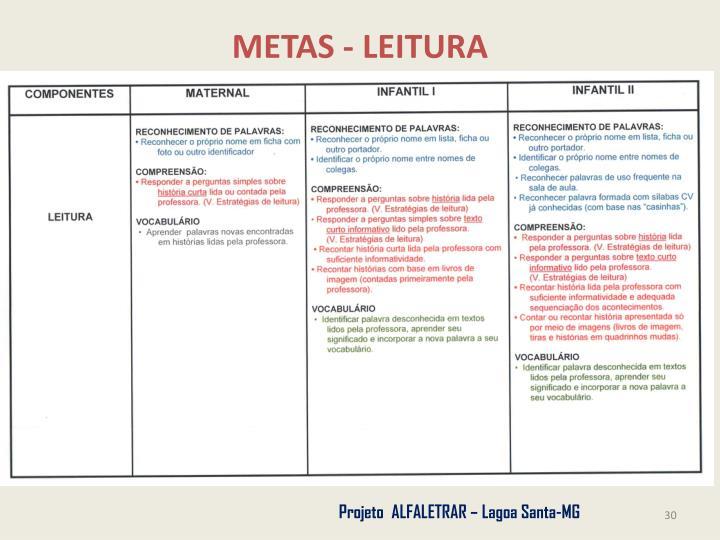 METAS - LEITURA