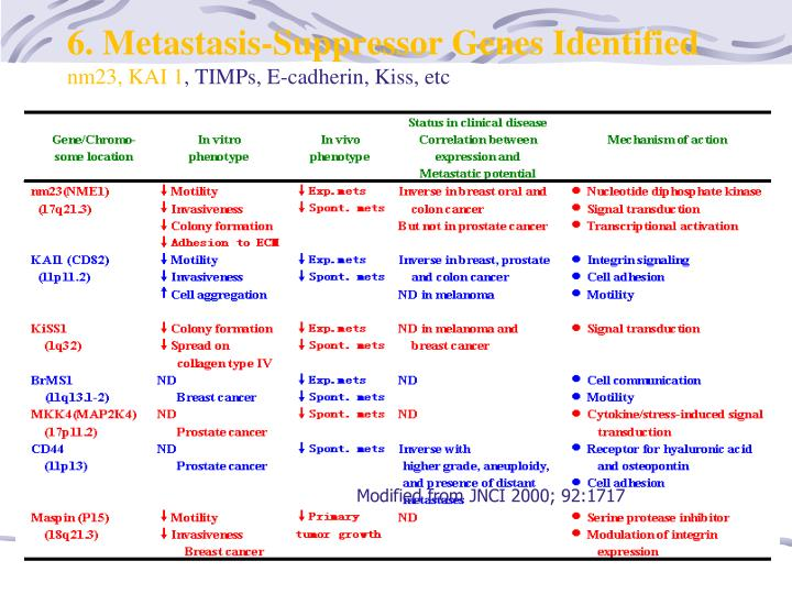 6. Metastasis-Suppressor Genes Identified