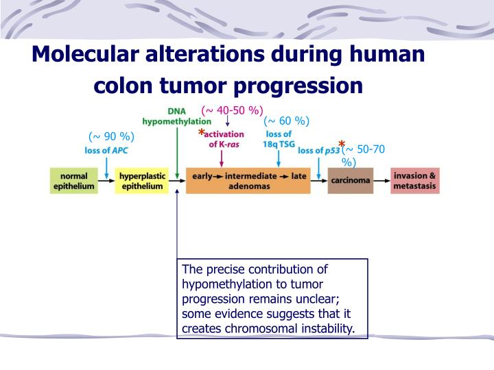 Molecular alterations during human