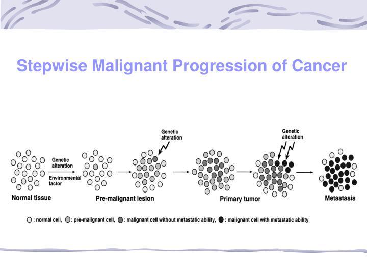 Stepwise Malignant Progression of Cancer