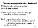obsah vzorov ho etick ho kodexu 8
