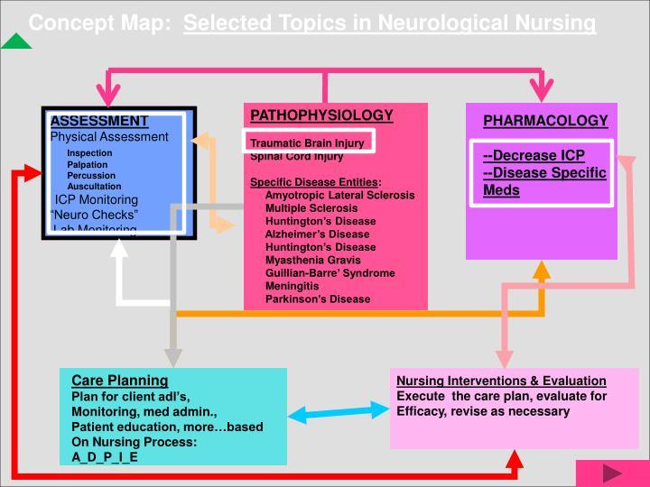 PPT - Brain Injury PowerPoint Presentation - ID:4751002