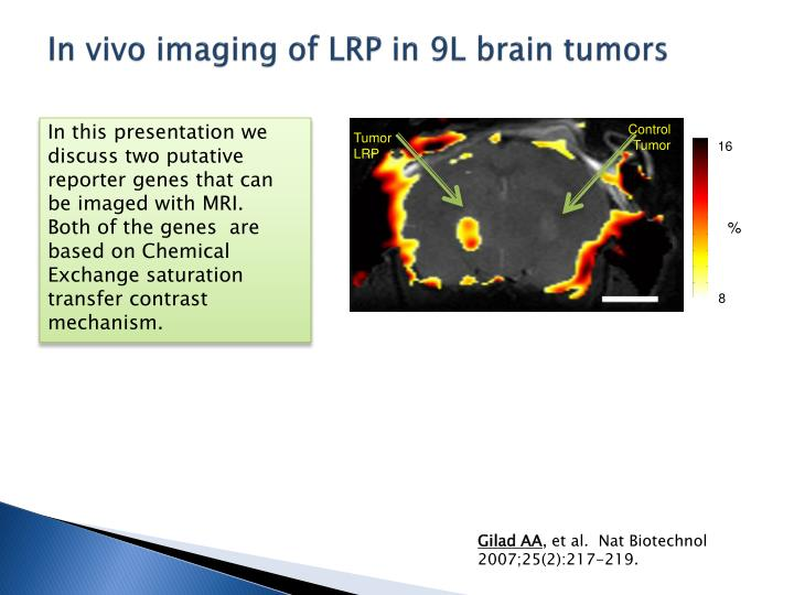 In vivo imaging of lrp in 9l brain tumors