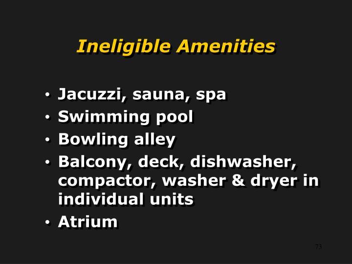 Ineligible Amenities
