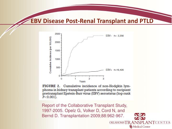 EBV Disease Post-Renal Transplant and PTLD