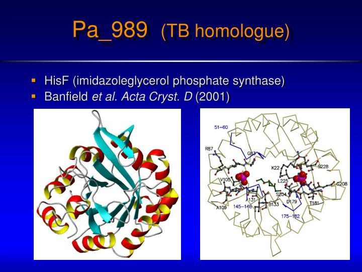HisF (imidazoleglycerol phosphate synthase)