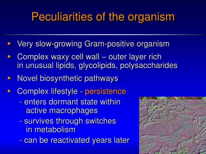 Peculiarities of the organism