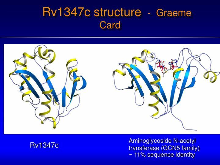 Rv1347c structure