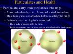 particulates and health