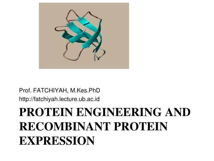protein engineering and recombinant protein expression n.