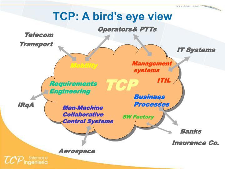 TCP: A bird's eye view