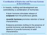 coordination of endocrine and nervous systems in invertebrates