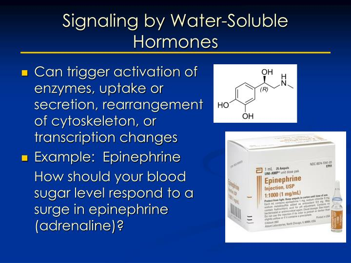 Signaling by Water-Soluble Hormones