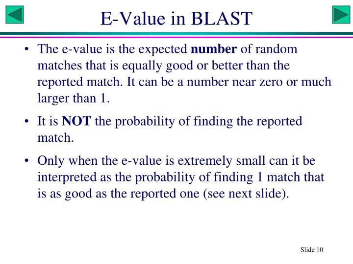 E-Value in BLAST