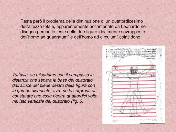 """Resta però il problema della diminuzione di un quattordicesimo dell'altezza totale, apparentemente accantonato da Leonardo nel disegno perché le teste delle due figure idealmente sovrapposte dell'homo ad quadratum"""" e dell'homo ad circulum"""" coincidono."""