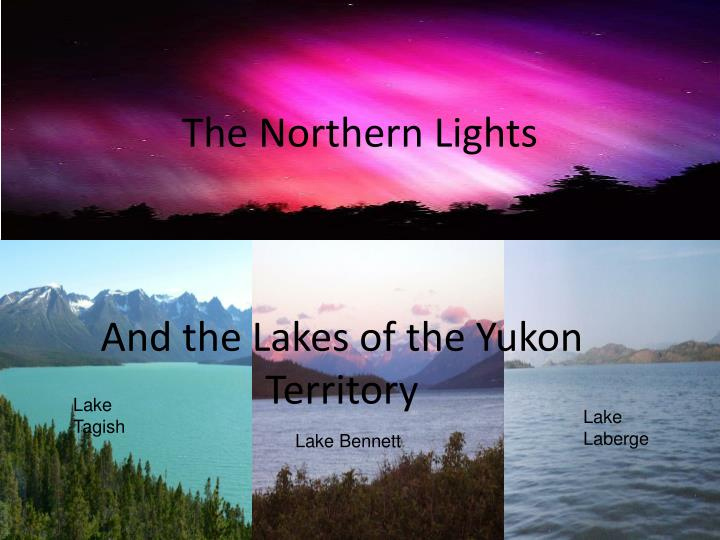 the northern lights n.