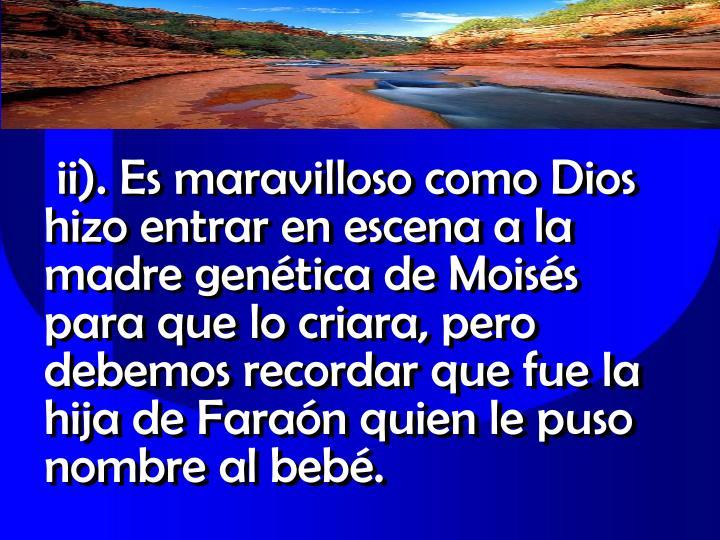 ii). Es maravilloso como Dios hizo entrar en escena a la madre genética de Moisés para que lo criara, pero debemos recordar que fue la hija de Faraón quien le puso nombre al bebé.