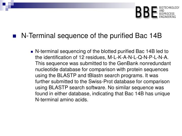 N-Terminal sequence of the purified Bac 14B