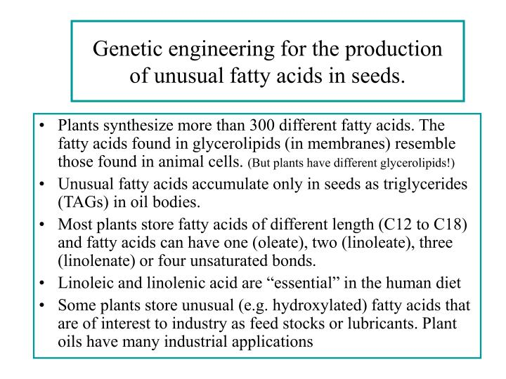 genetic engineering for the production of unusual fatty acids in seeds n.