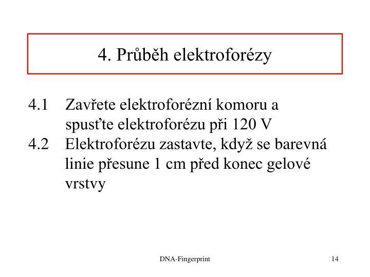 4. Průběh elektroforézy