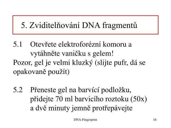 5. Zviditelňování DNA