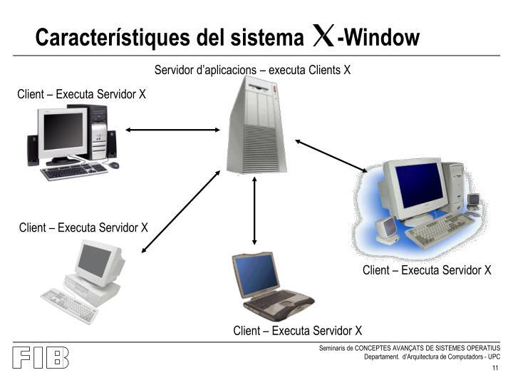Característiques del sistema      -Window