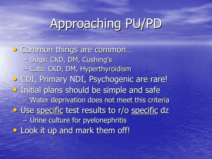 Approaching PU/PD