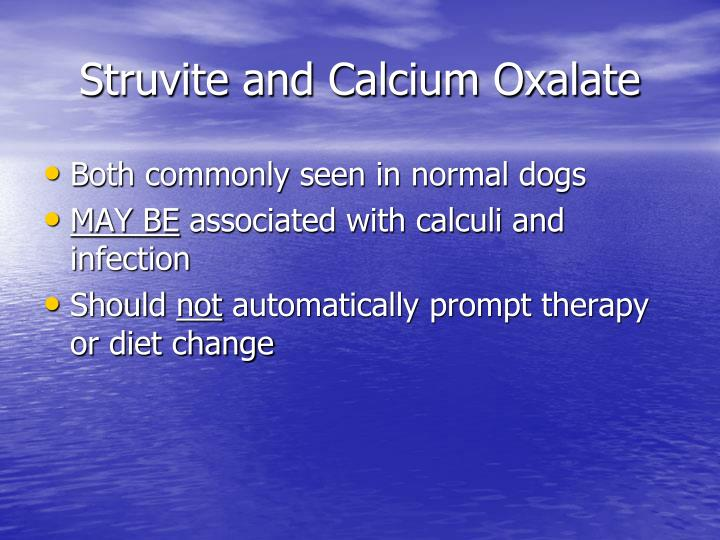 Struvite and Calcium Oxalate