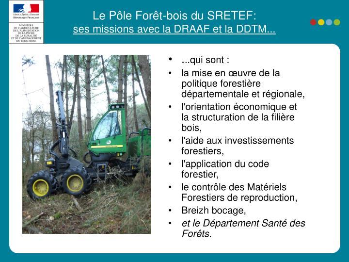 Le Pôle Forêt-bois du SRETEF: