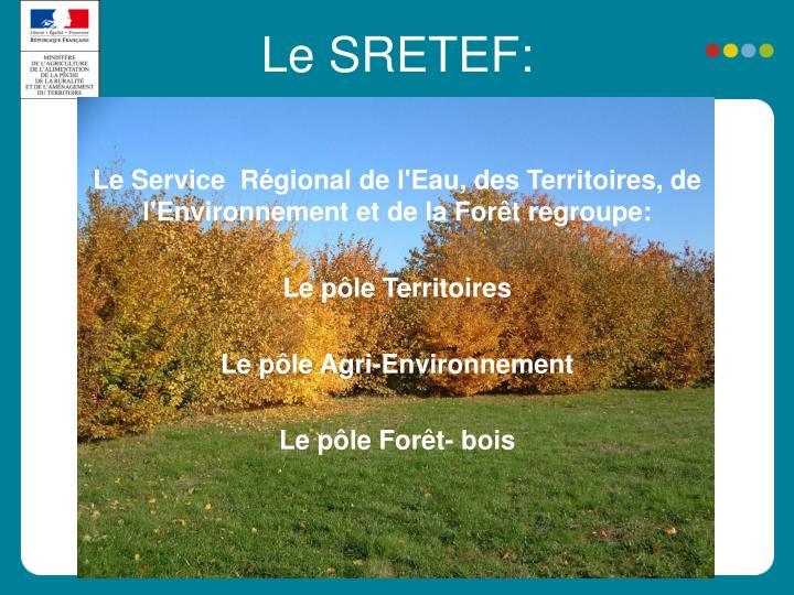 Le Service  Régional de l'Eau, des Territoires, de l'Environnement et de la Forêt regroupe: