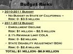 budget risks