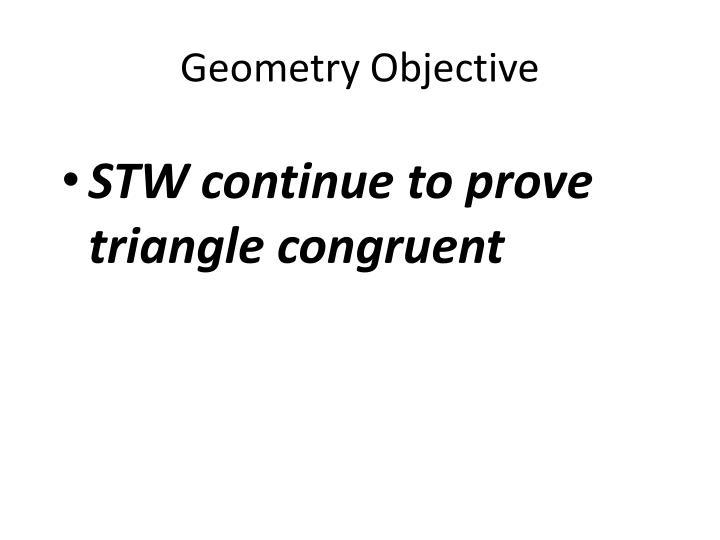 Geometry objective
