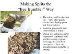 making splits the bee bumbler way10