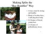 making splits the bee bumbler way2