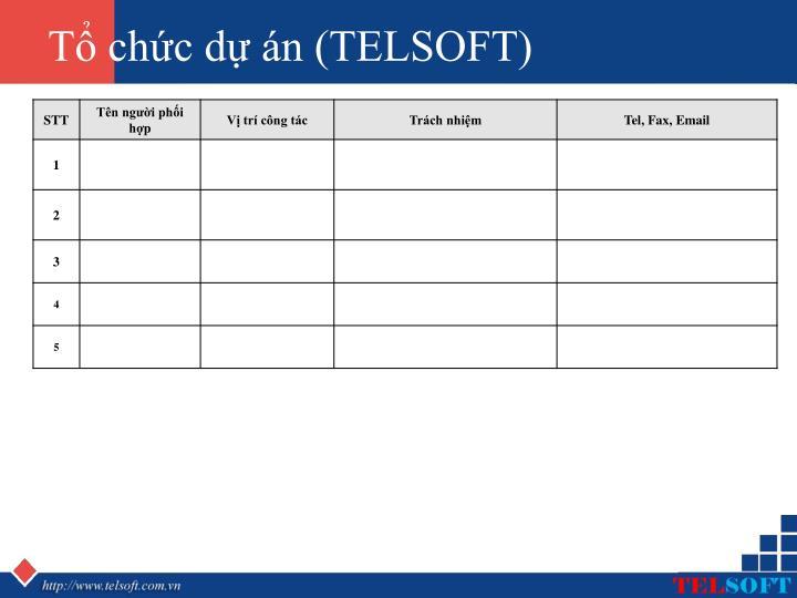 Tổ chức dự án (TELSOFT)