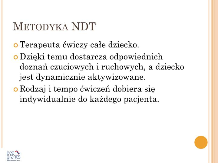 Metodyka NDT