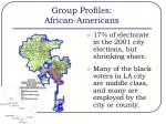 group profiles african americans1
