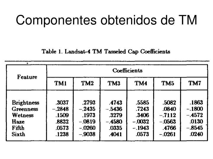 Componentes obtenidos de TM