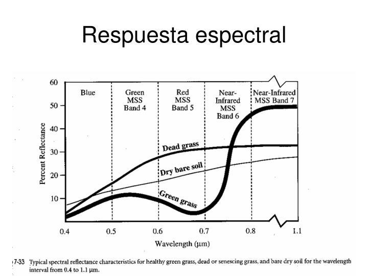 Respuesta espectral