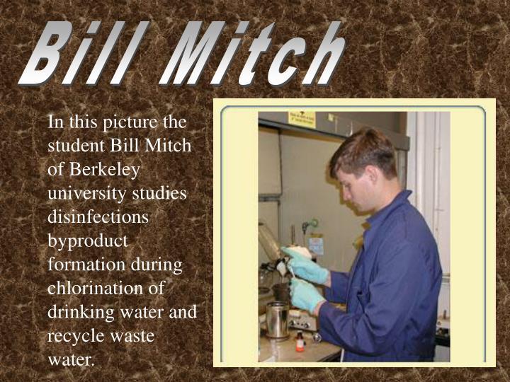 Bill Mitch