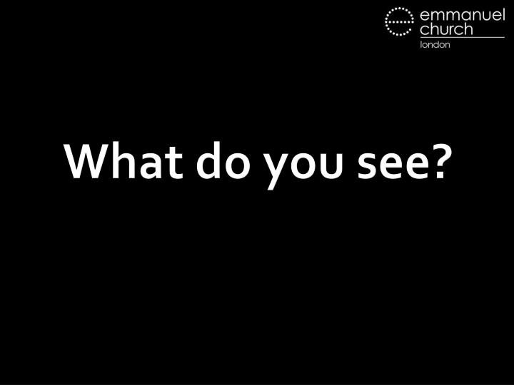 what do you see n.