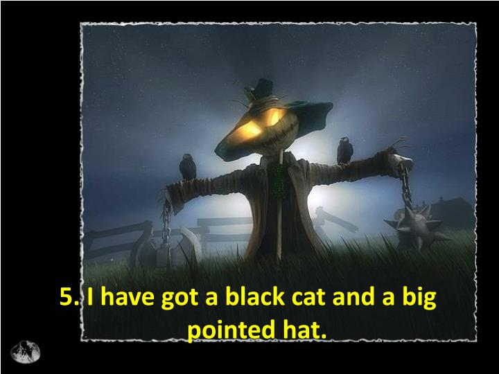 5. I have got a black cat and a big pointed hat.