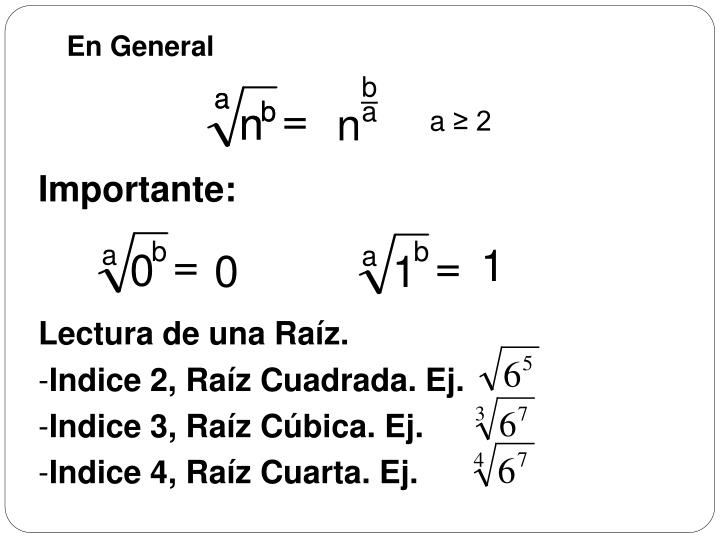 PPT - RAÍCES PowerPoint Presentation - ID:4762618