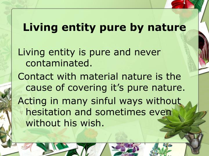 Living entity pure by nature