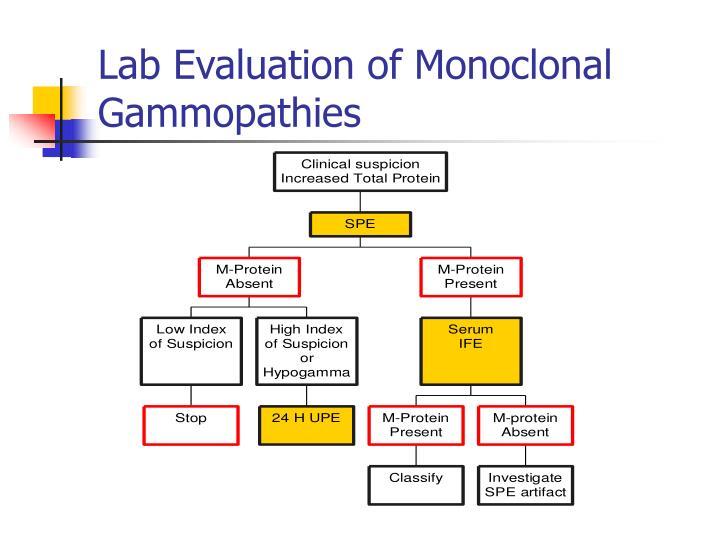 Lab Evaluation of Monoclonal Gammopathies