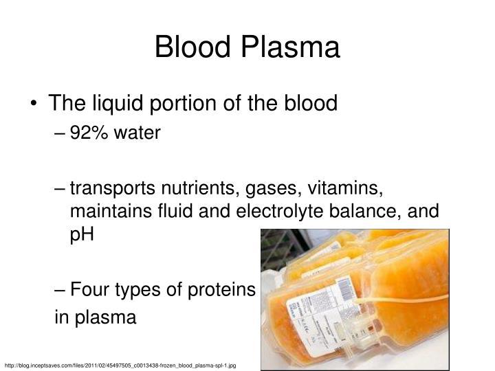 Blood Plasma