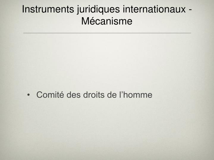 Instruments juridiques internationaux - Mécanisme