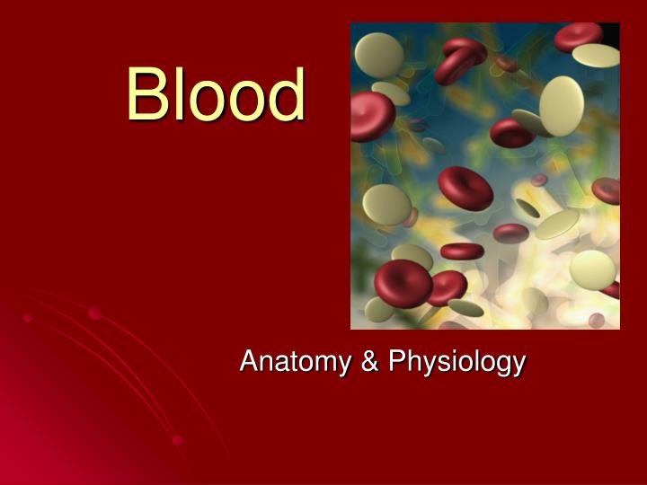 anatomy cellular portion of blood Red blood cells are responsible for oxygen binding and transportation using their the circulatory system  and quizzes about dozens of other anatomy.