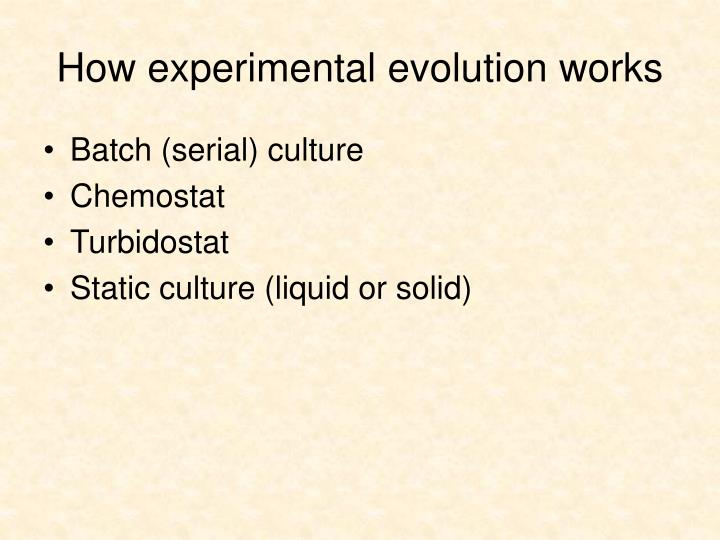How experimental evolution works